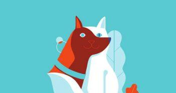 seguro para mascotas