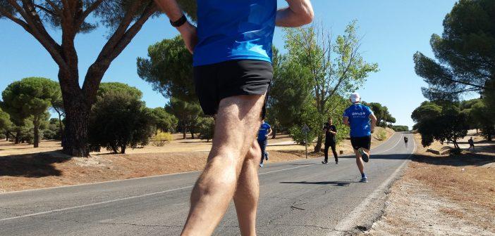 consejos para preparar una maratón
