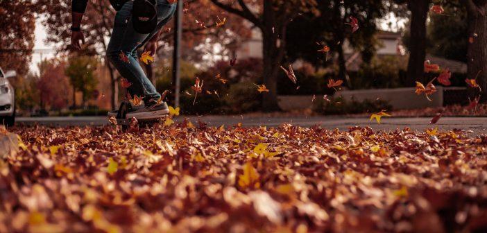cambios con el otoño